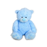Small Blue Teddy