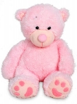 Large Pink Teddy